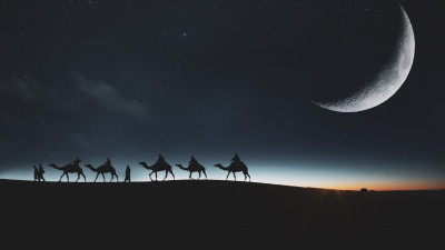 Traveling through desert on camels