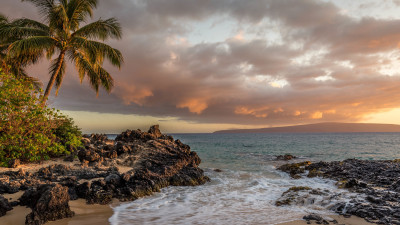 Kihei beach and palm trees