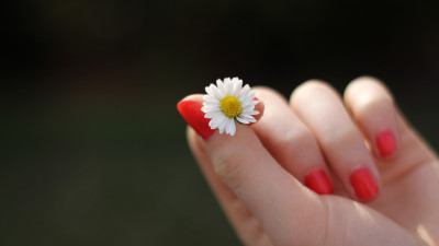 Girl with red nails and a daisy flower