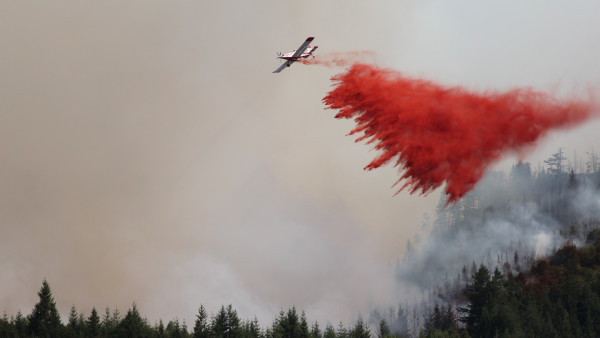 Airplane for fire fighting forest