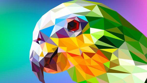 Low Poly Illustration: Parrot