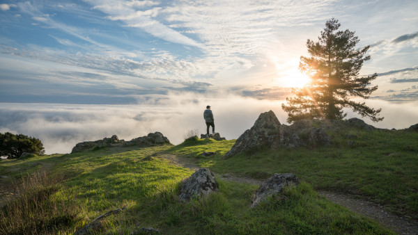 2048x2048 Serene Sunset Ipad Air Hd 4k Wallpapers Images: Traveler Admiring The Sunset HD Wallpaper
