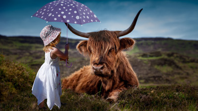 Child with the umbrella and the funny cow