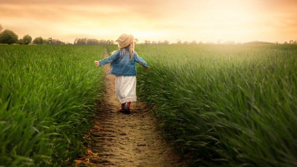 Child in the green field at sunset