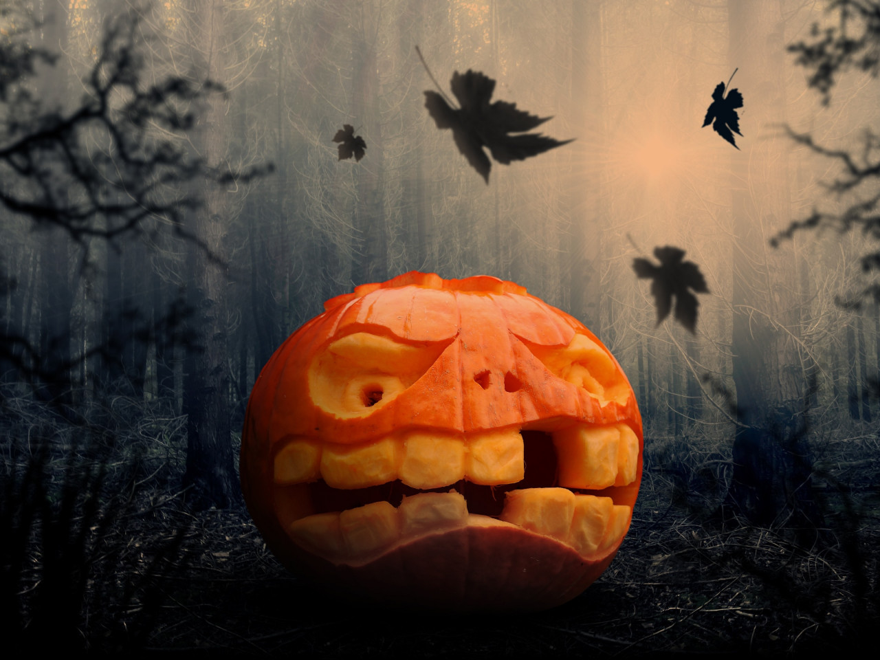 Halloween pumpkin wallpaper 1280x960