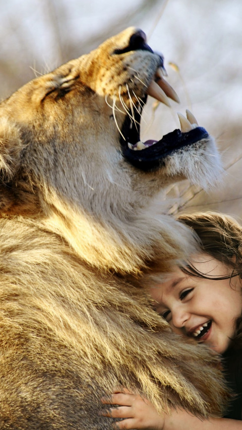 Best friends: lionking and the child wallpaper 480x854