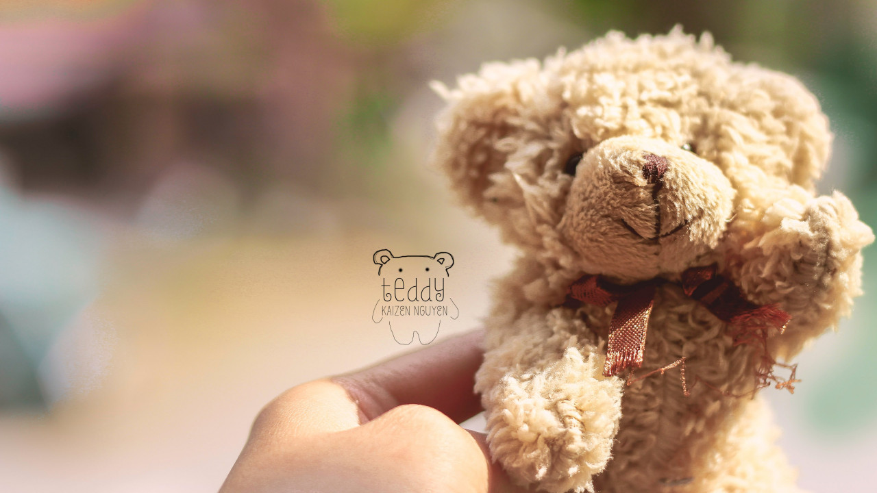 Teddy Bear wallpaper 1280x720