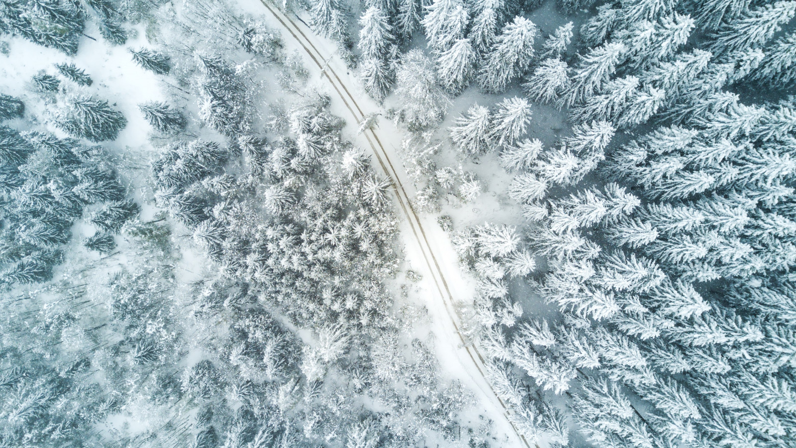 Aerial Winter landscape wallpaper 1600x900
