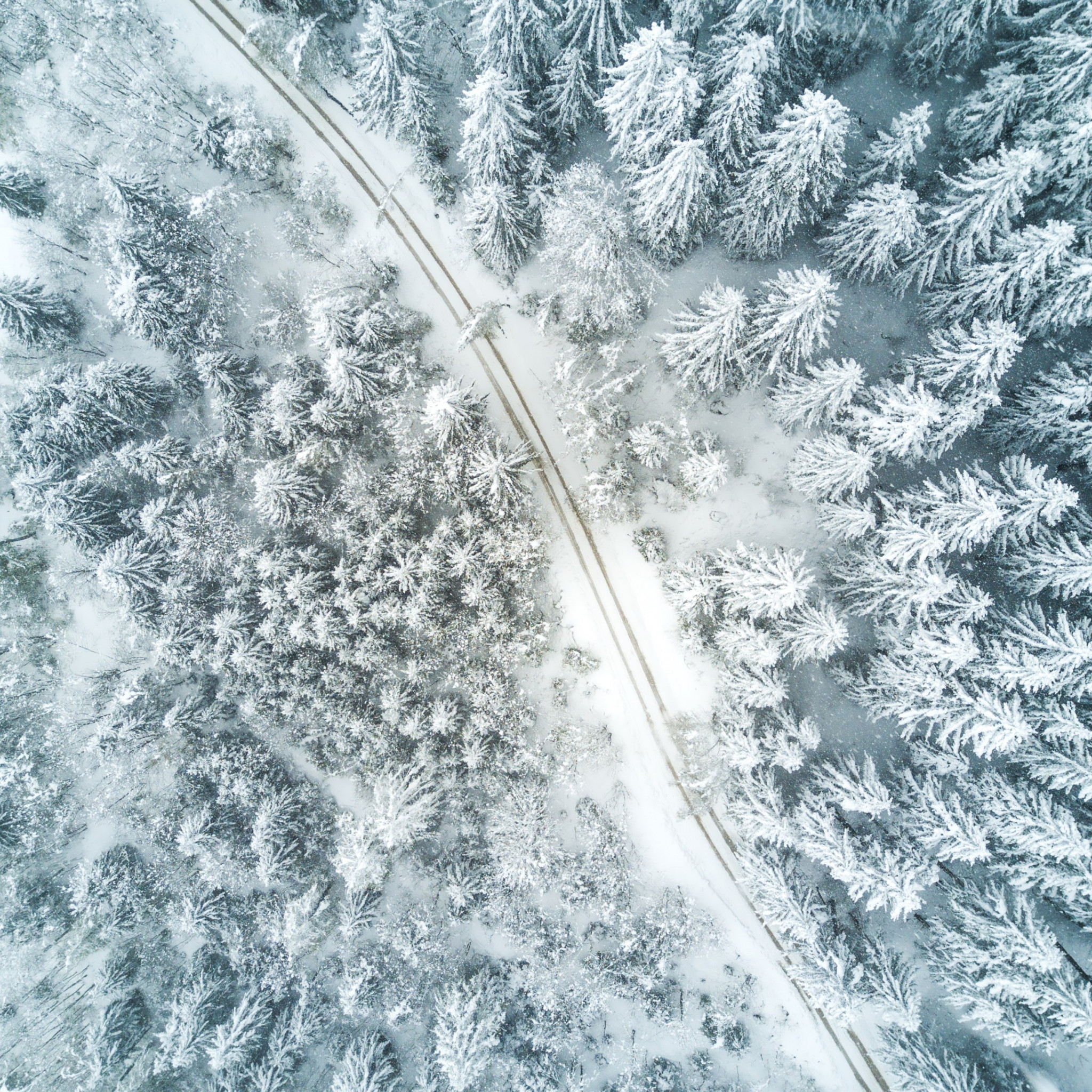 Aerial Winter landscape wallpaper 2048x2048