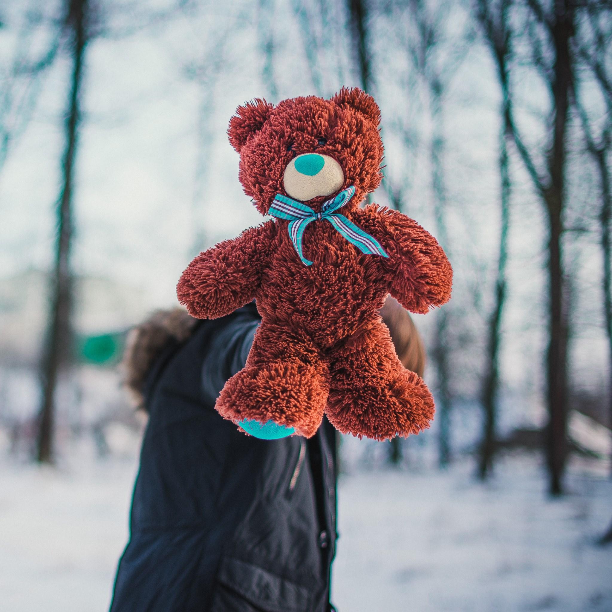 Download Wallpaper Meet My New Teddy Bear 2048x2048