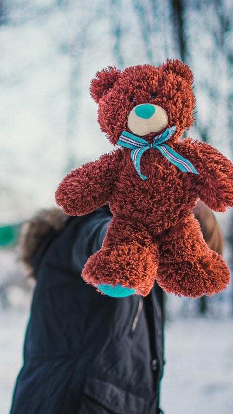 Meet my new Teddy Bear | 480x854 wallpaper