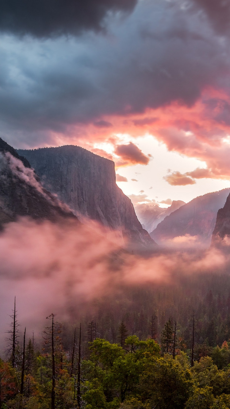 Landscape from Yosemite National Park | 750x1334 wallpaper