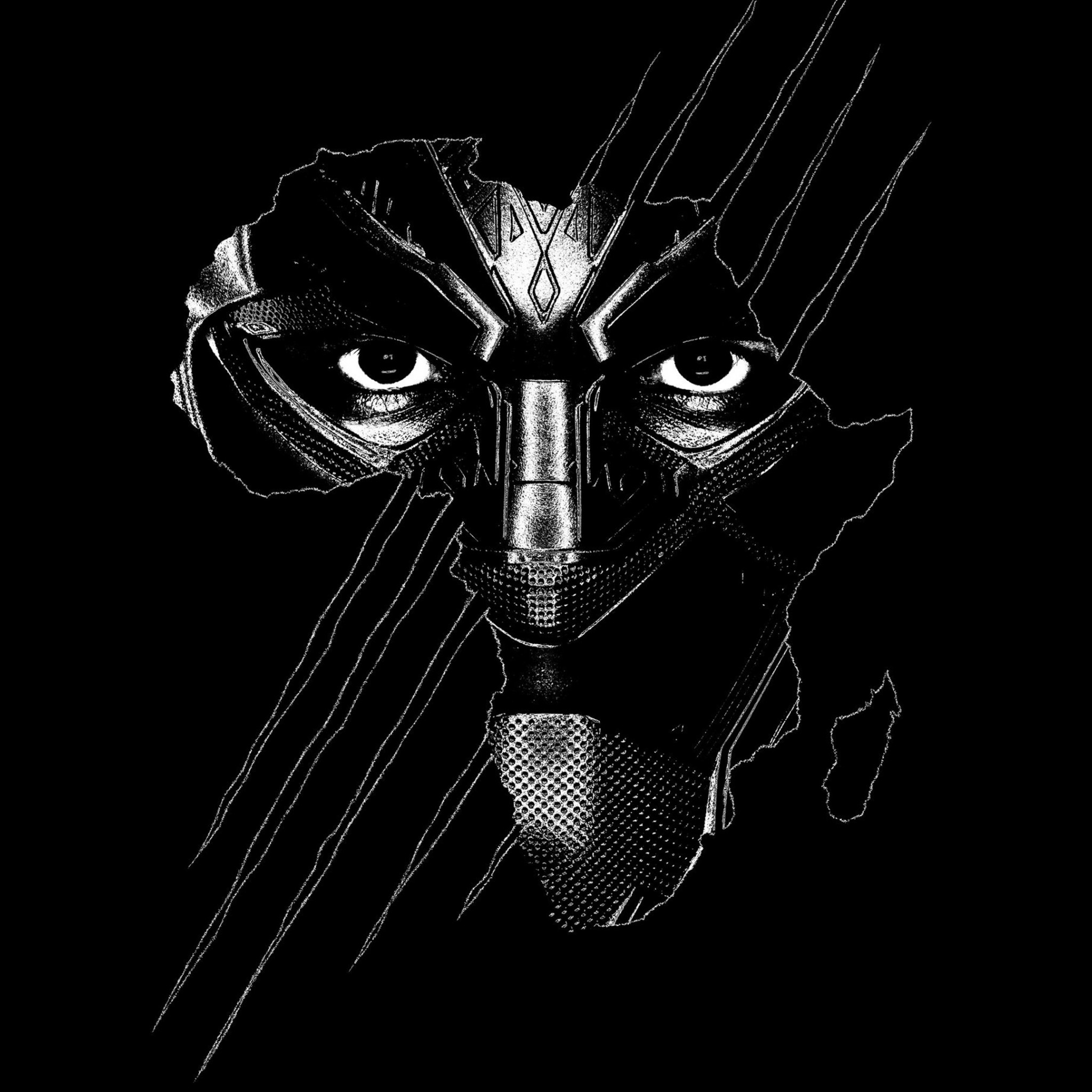 Black Panther wallpaper 2048x2048