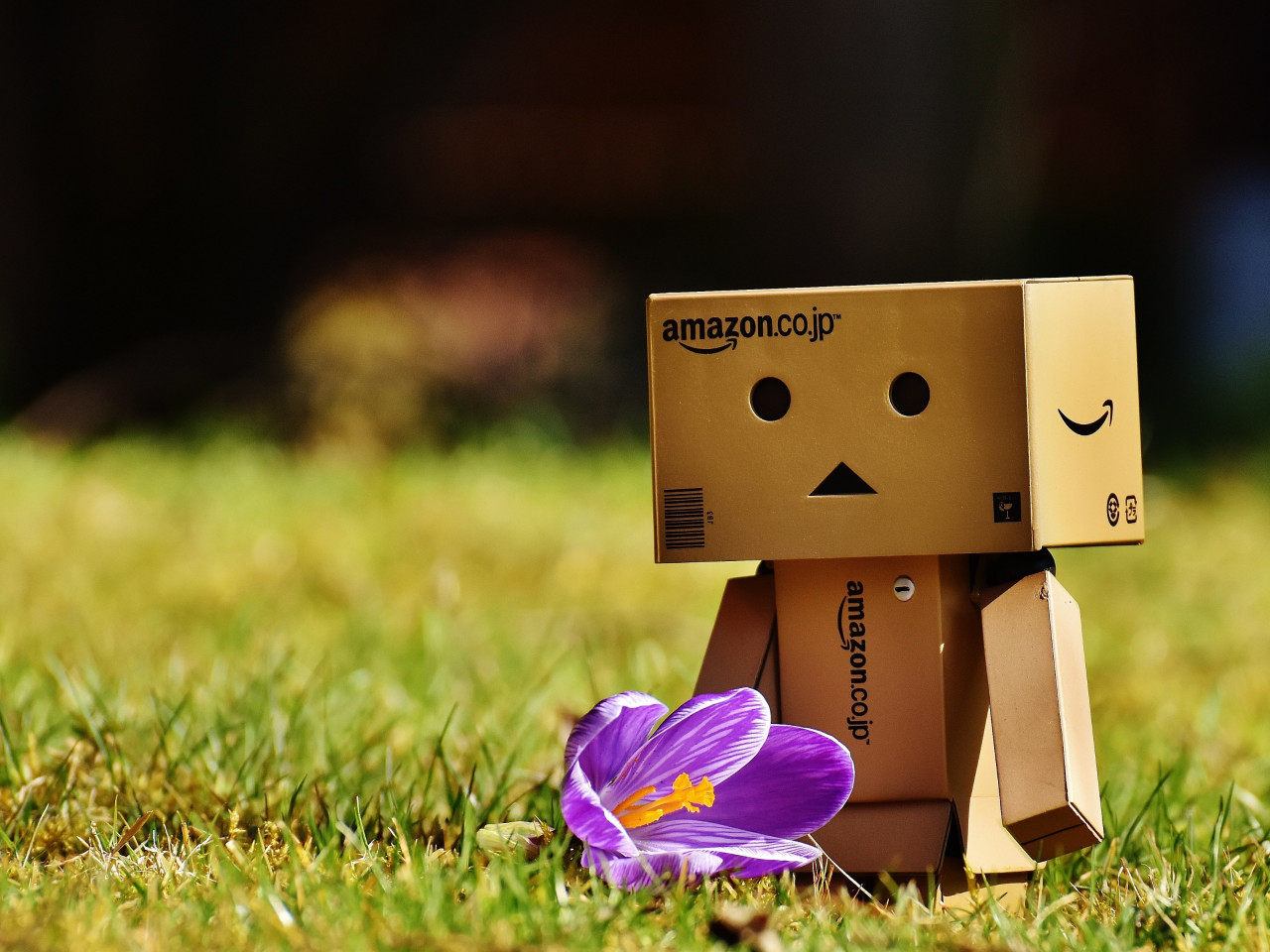 Danbo is enjoying of Spring wallpaper 1280x960