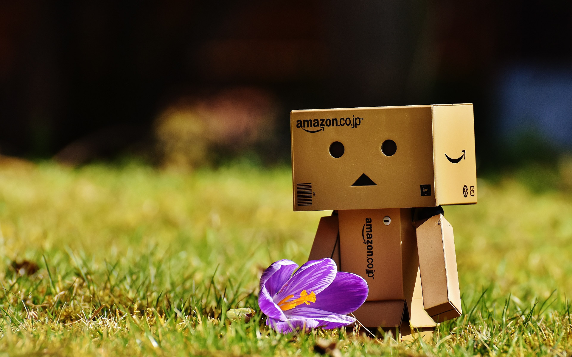 Danbo is enjoying of Spring wallpaper 1920x1200