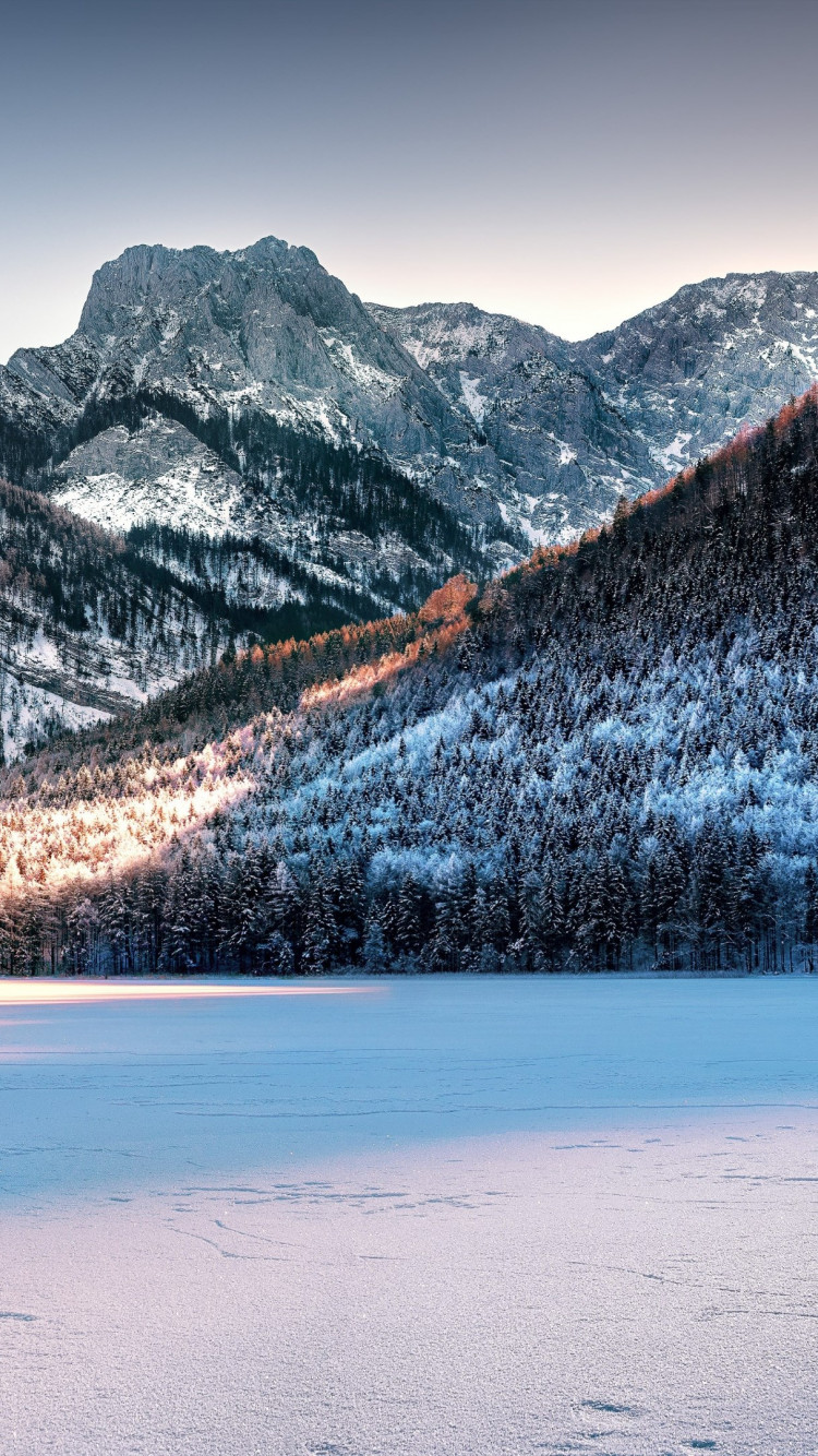 Dreamy Winter landscape wallpaper 750x1334
