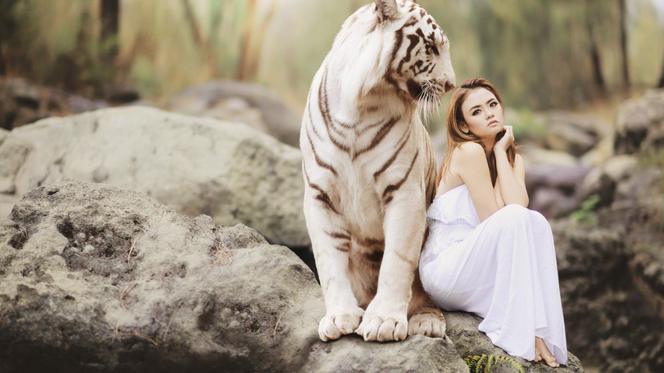 Bengal tiger and a beautiful girl | 1366x768 wallpaper