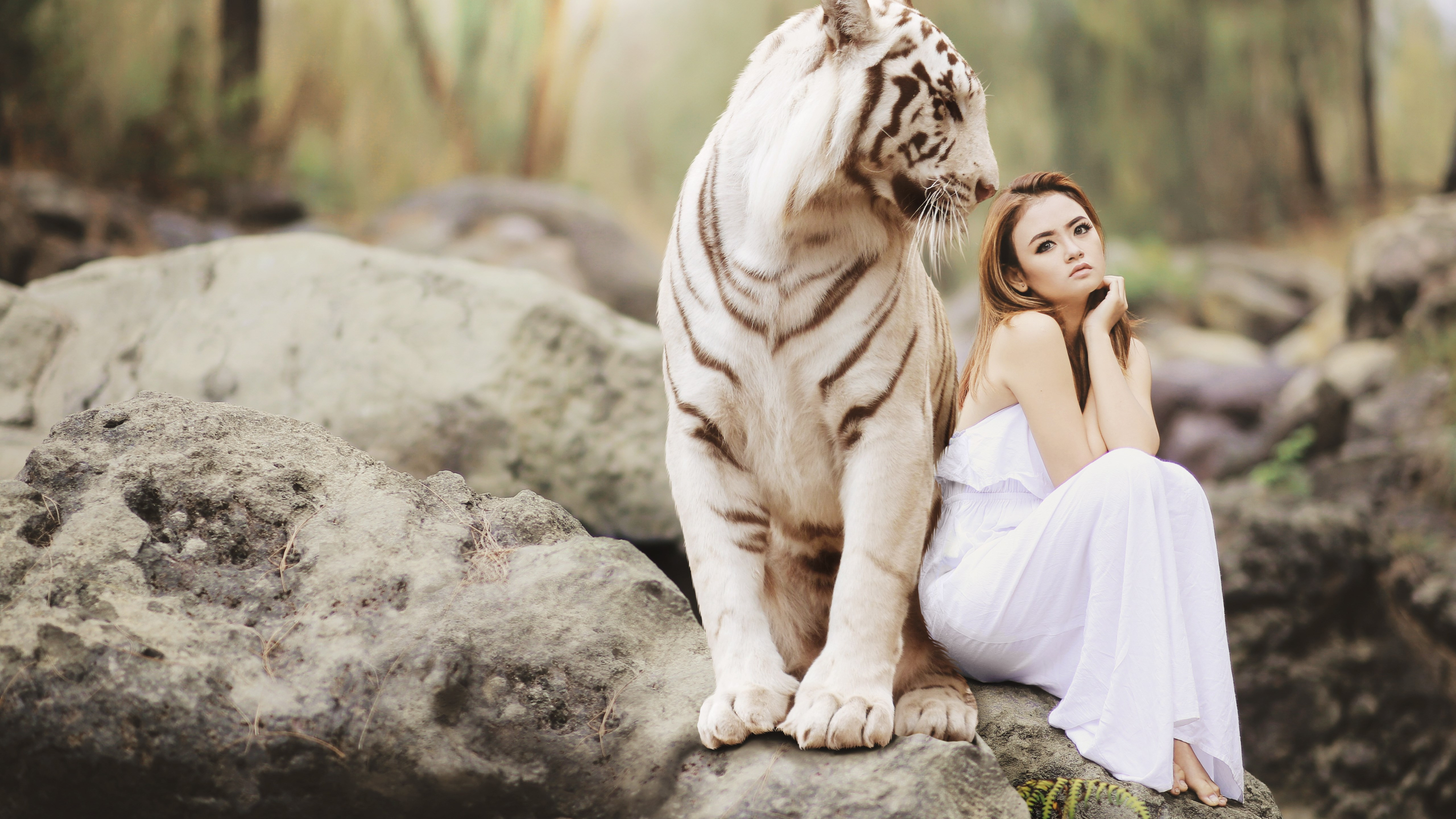 Bengal tiger and a beautiful girl wallpaper 5120x2880