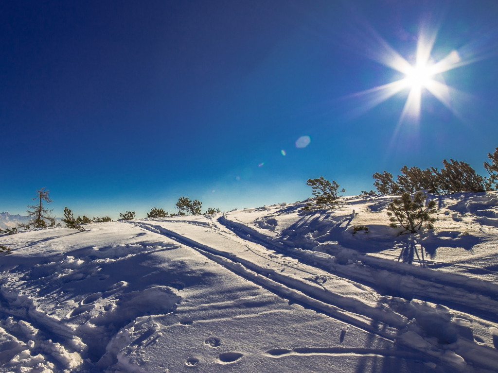Sunny day in this Winter landscape wallpaper 1024x768