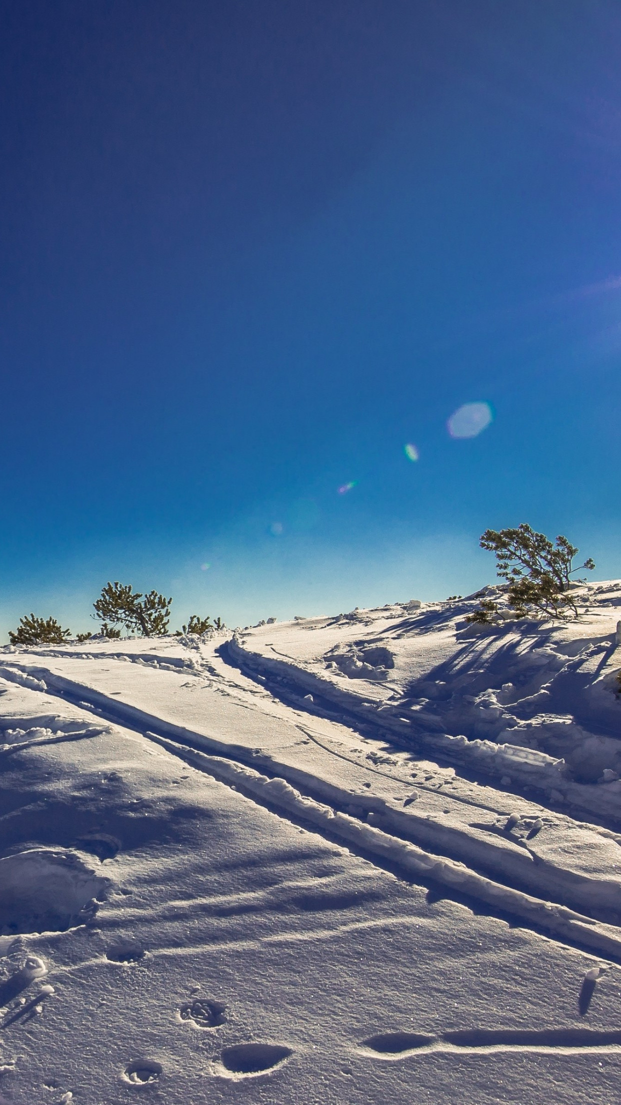 Sunny day in this Winter landscape wallpaper 1242x2208
