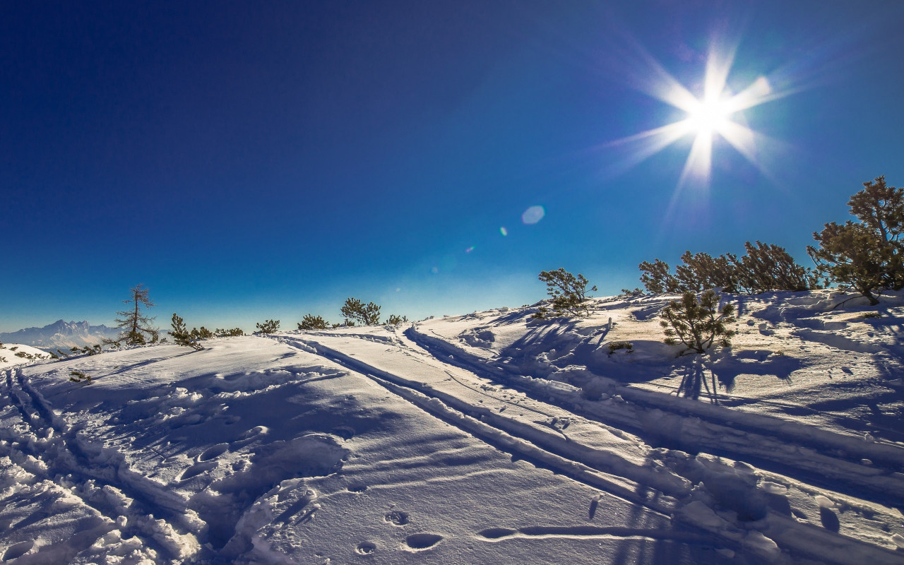 Sunny day in this Winter landscape wallpaper 1280x800
