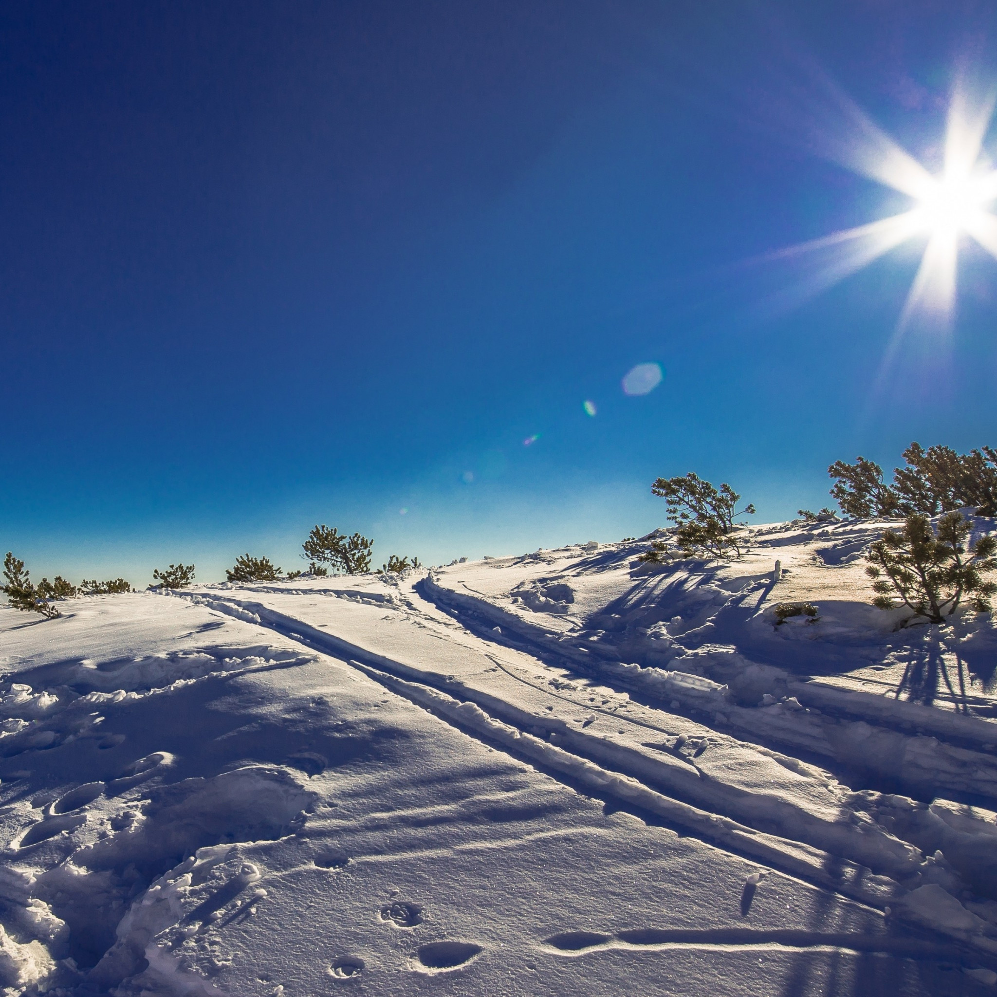 Sunny day in this Winter landscape wallpaper 2048x2048