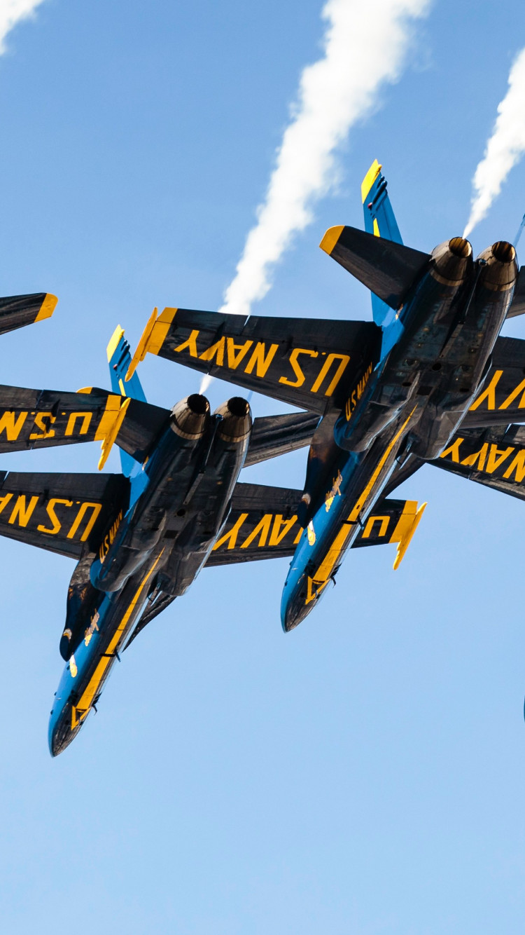 Blue Angels at San Francisco airshow wallpaper 750x1334