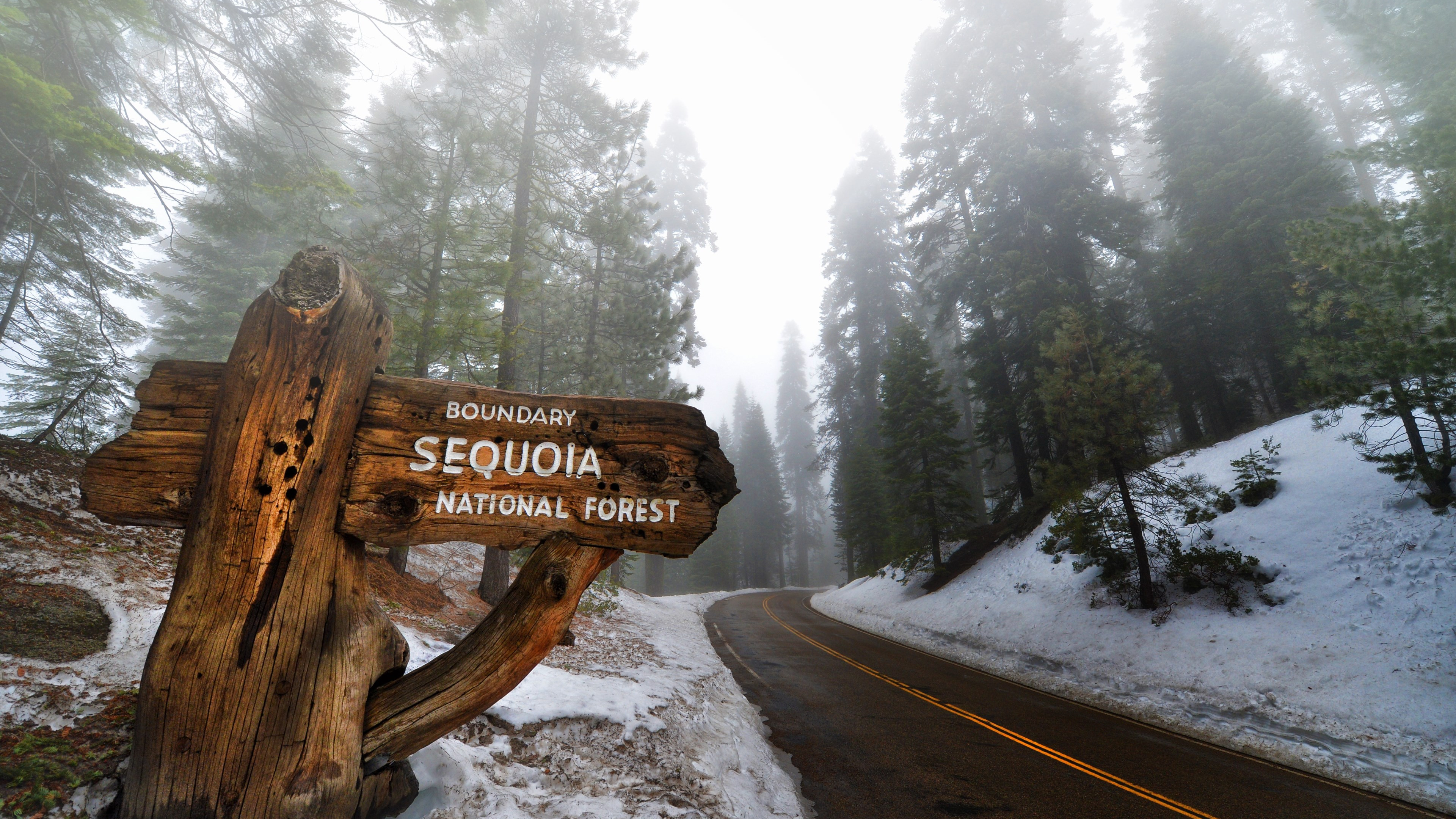 Sequoia National Park wallpaper 3840x2160