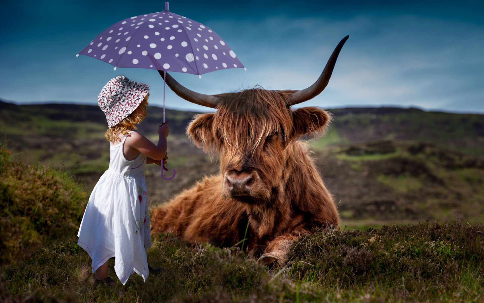 Child with the umbrella and the funny cow wallpaper 1920x1200