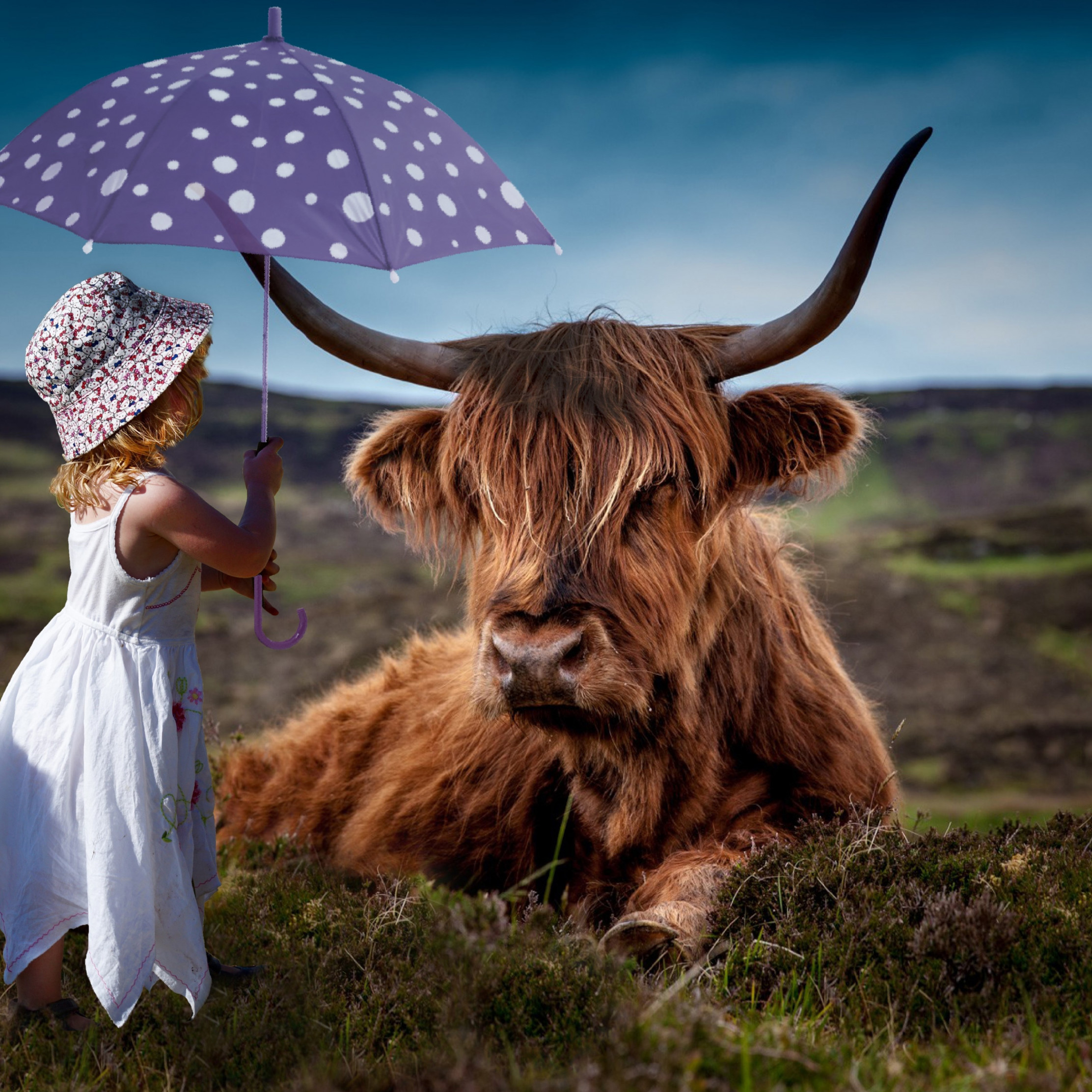 Child with the umbrella and the funny cow wallpaper 2224x2224