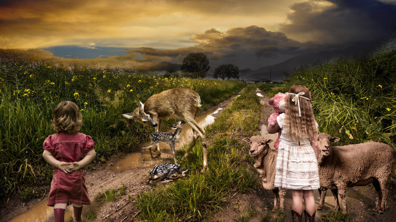 Children, sheep and deer wallpaper 1280x720