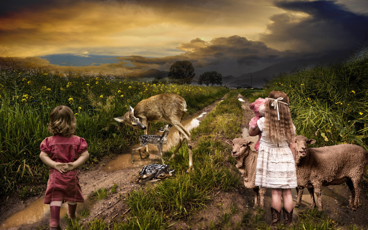Children, sheep and deer | 1280x800 wallpaper