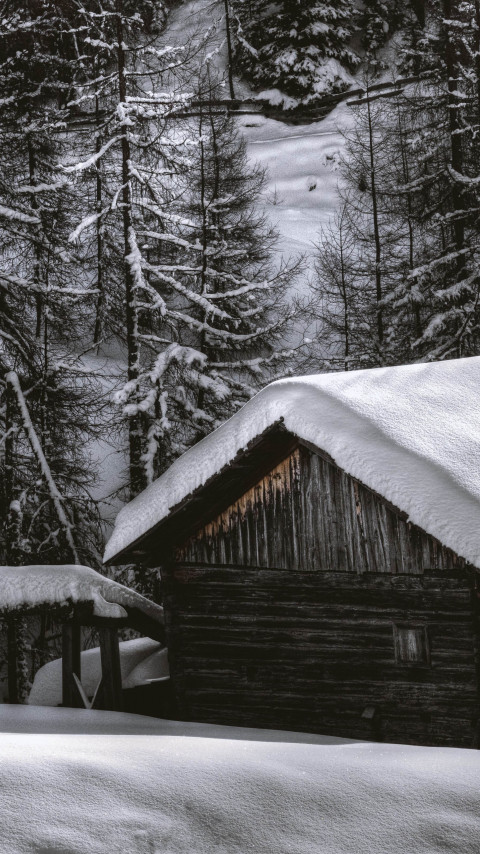 The house from the snow forest wallpaper 480x854