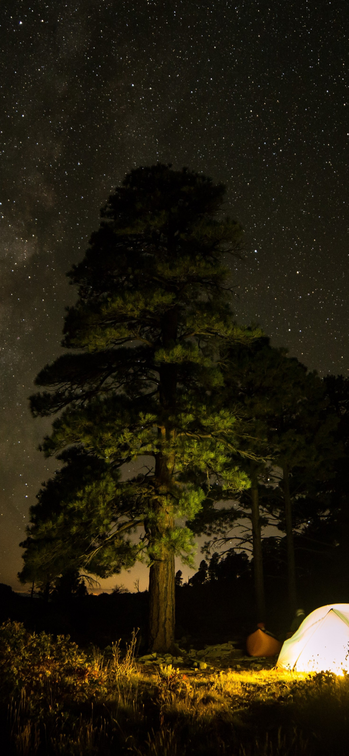 With tent under the night sky wallpaper 1125x2436