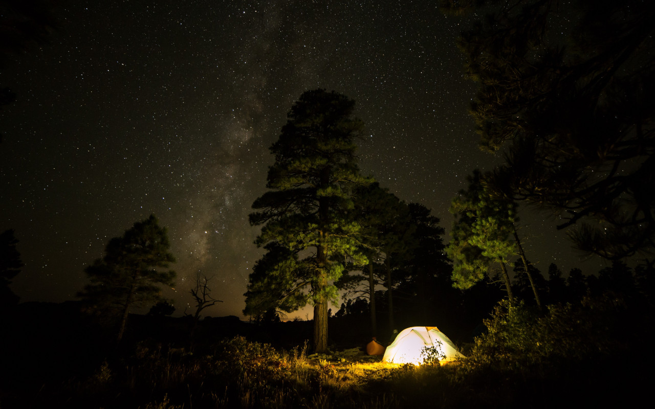 With tent under the night sky wallpaper 1280x800