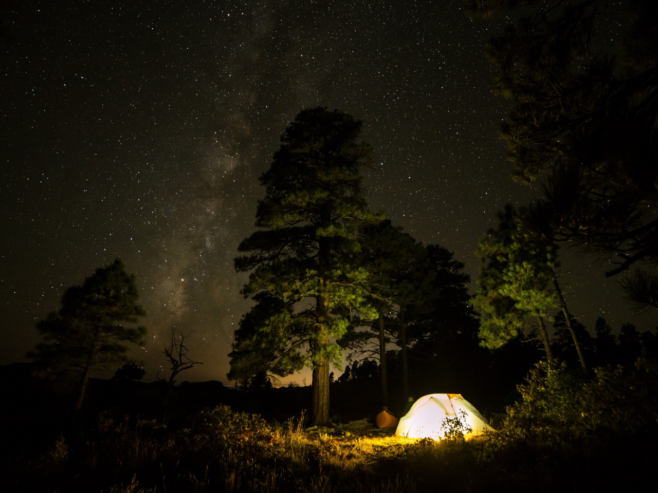 With tent under the night sky wallpaper 1280x960