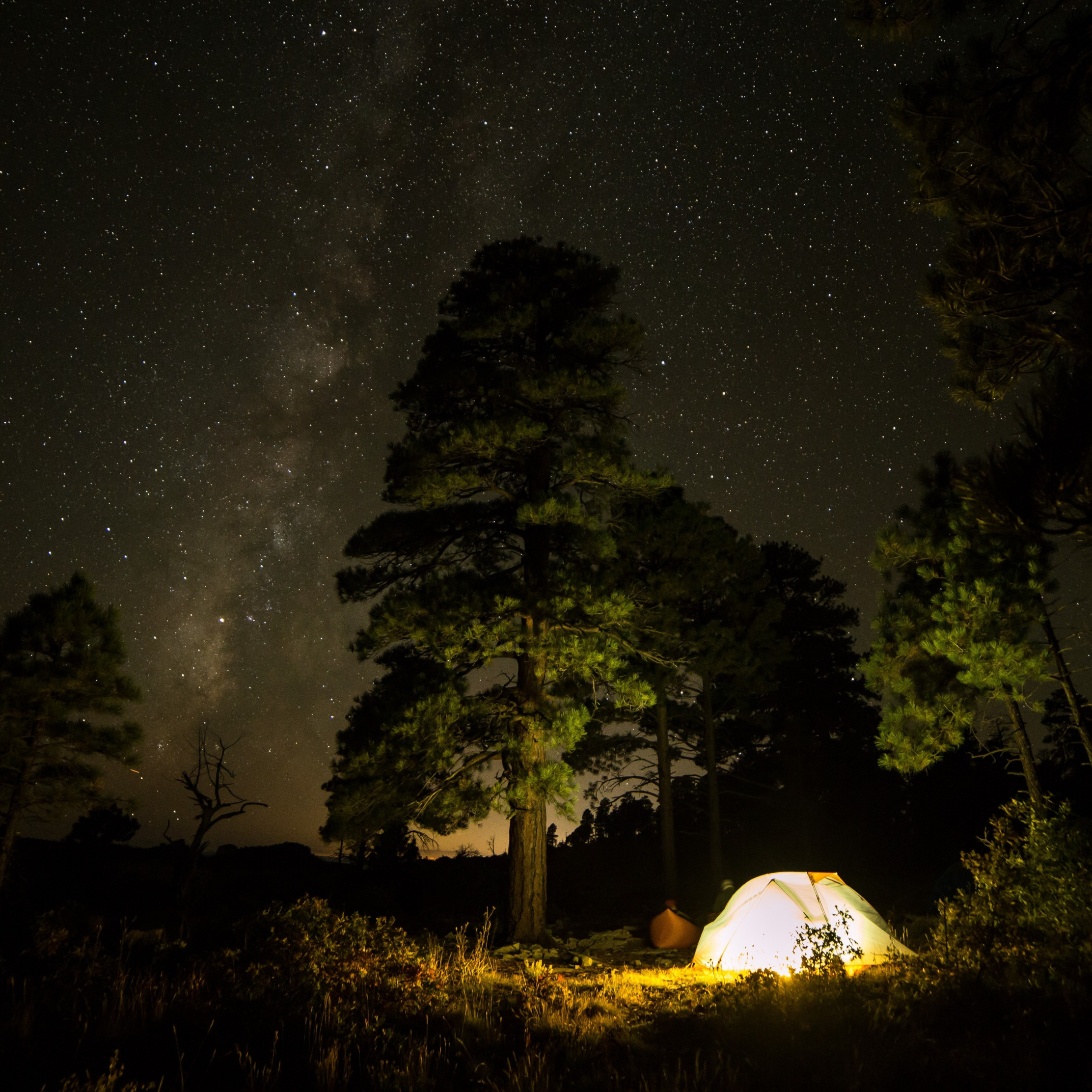 With tent under the night sky wallpaper 2224x2224