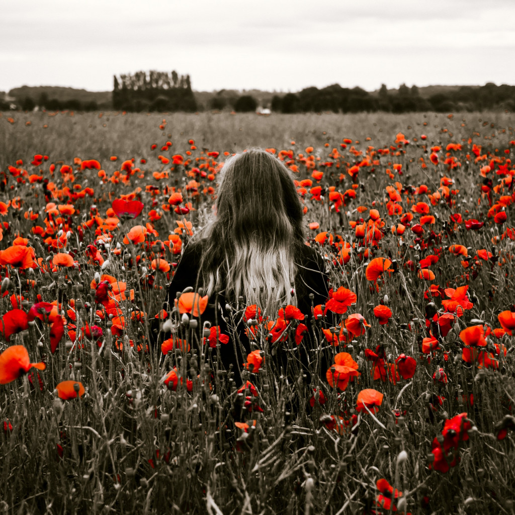 Girl in the field with red poppies wallpaper 1024x1024