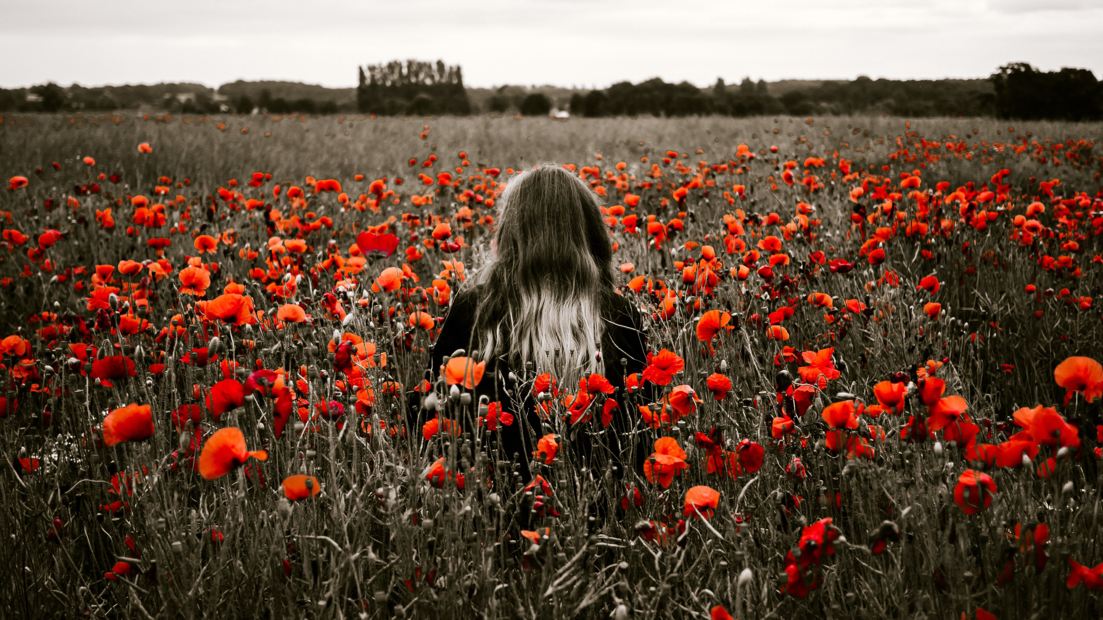 Girl in the field with red poppies wallpaper 3840x2160