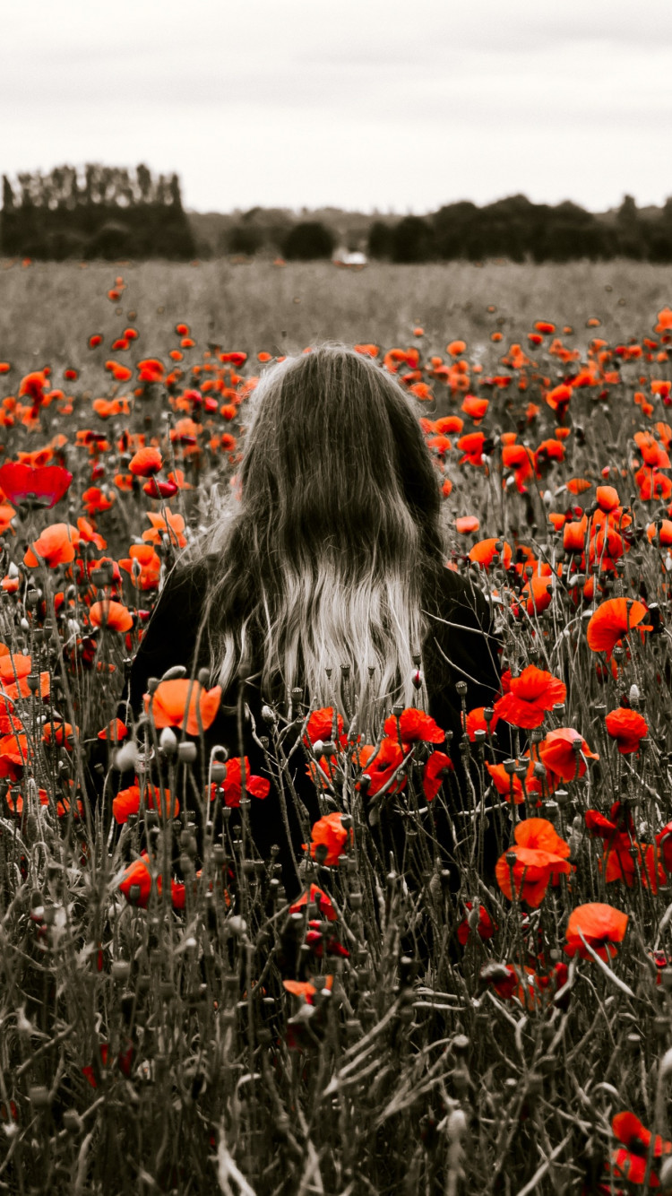 Girl in the field with red poppies wallpaper 750x1334