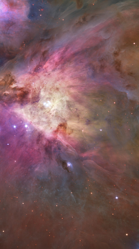 Orion Nebula wallpaper 480x854