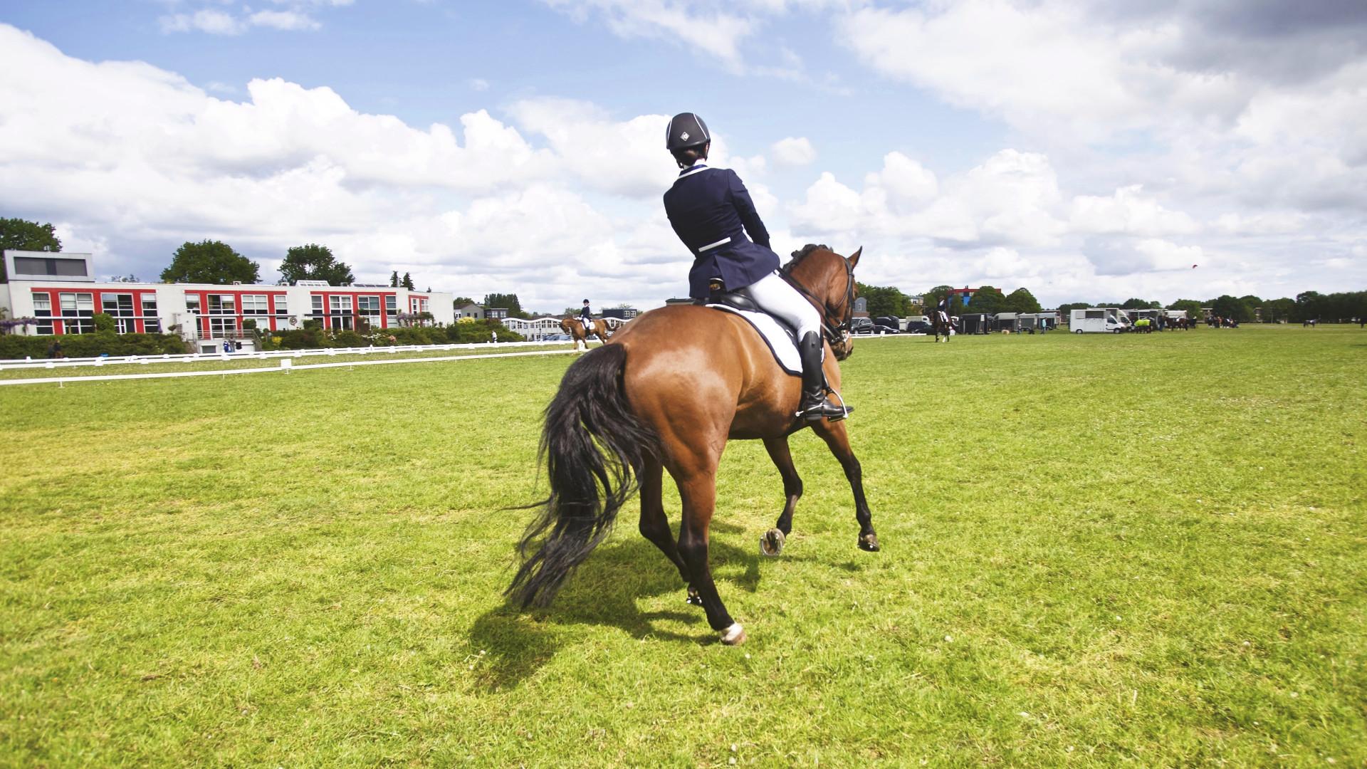 Download Wallpaper Horse Riding 1920x1080