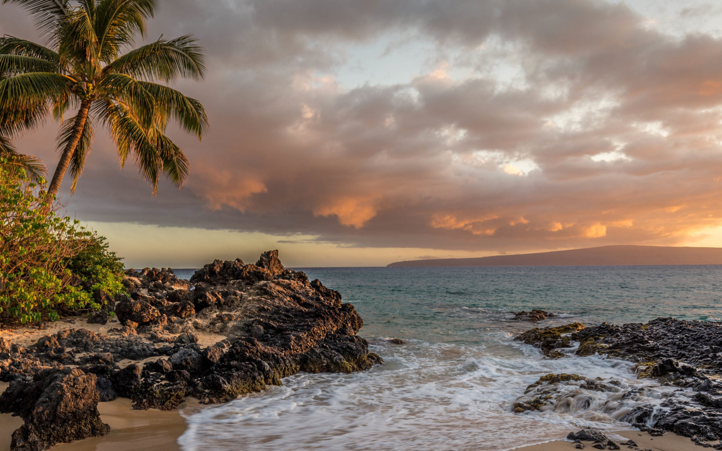 Kihei beach and palm trees wallpaper 1440x900