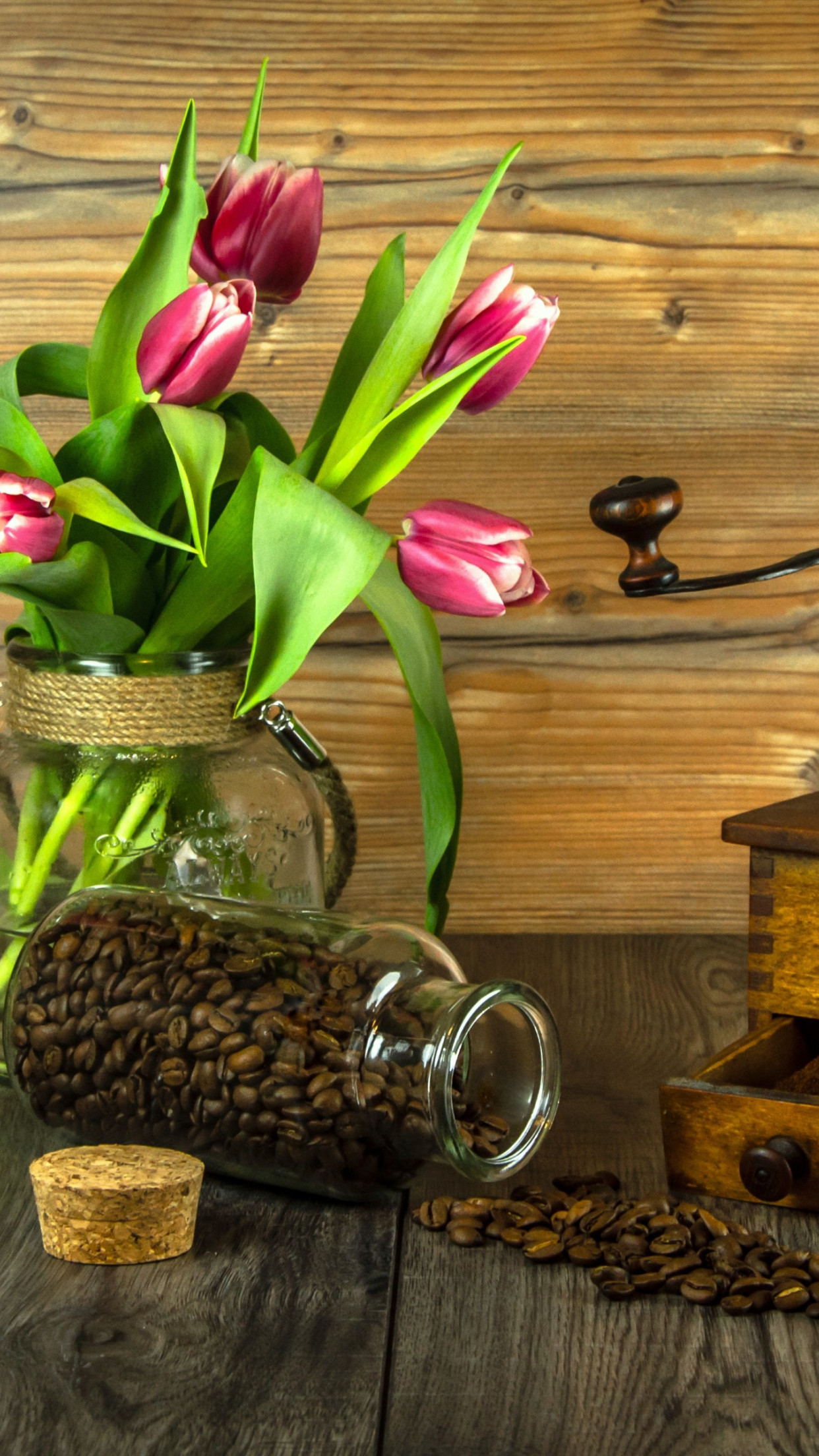 Red tulips and coffee grains | 1242x2208 wallpaper