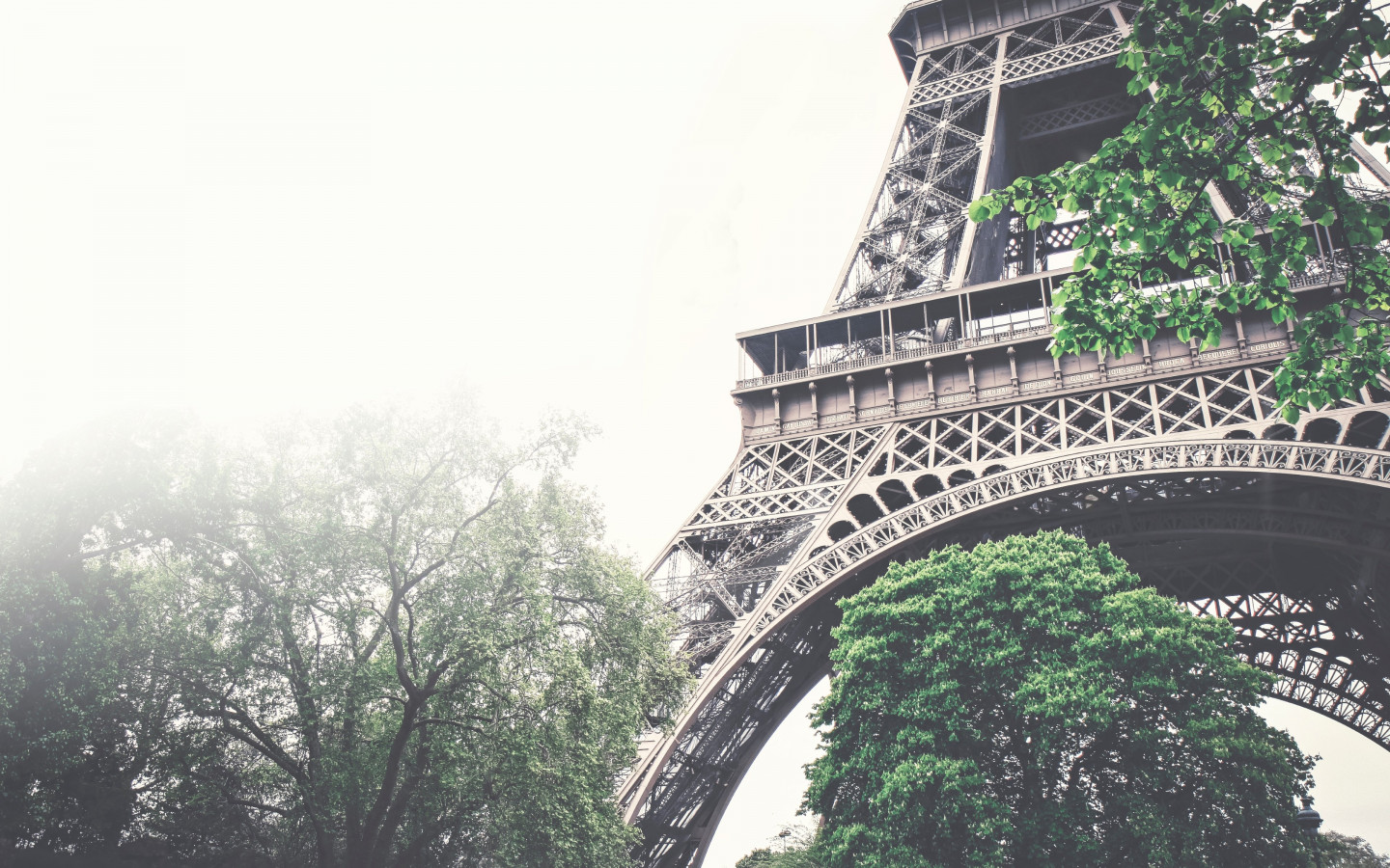 Tour Eiffel in a foggy day | 1440x900 wallpaper