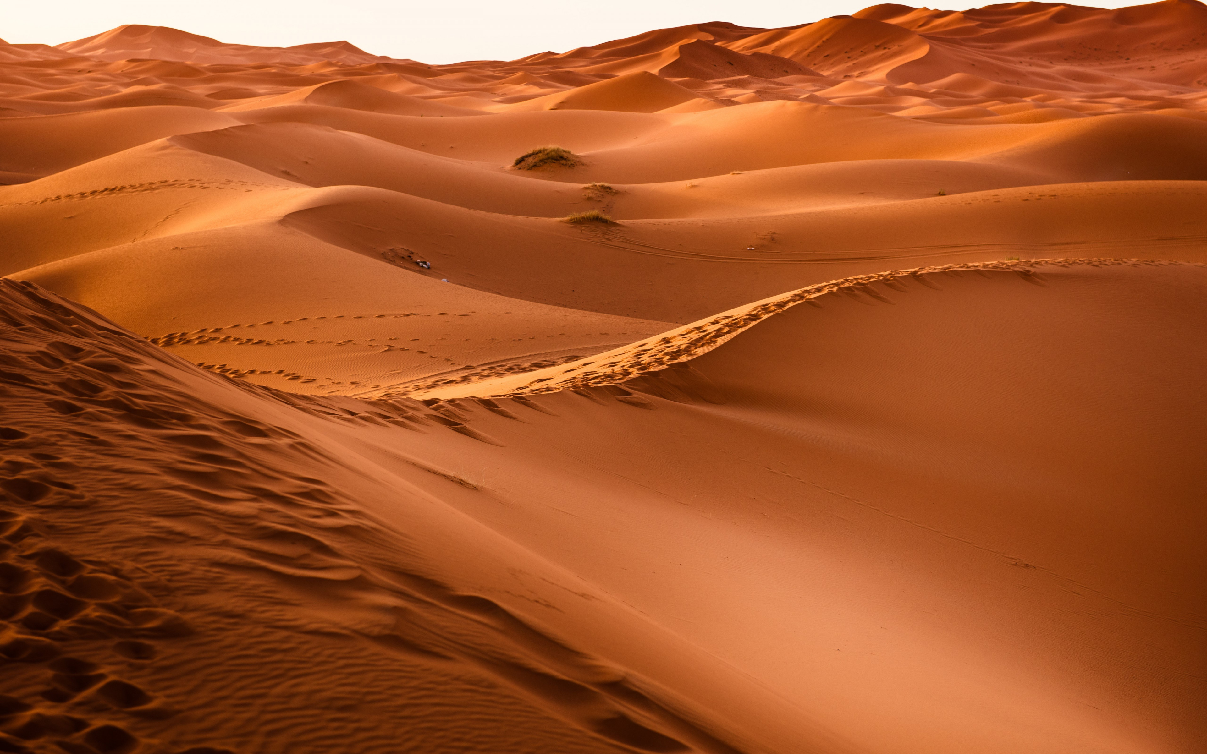 Sahara Desert | 3840x2400 wallpaper