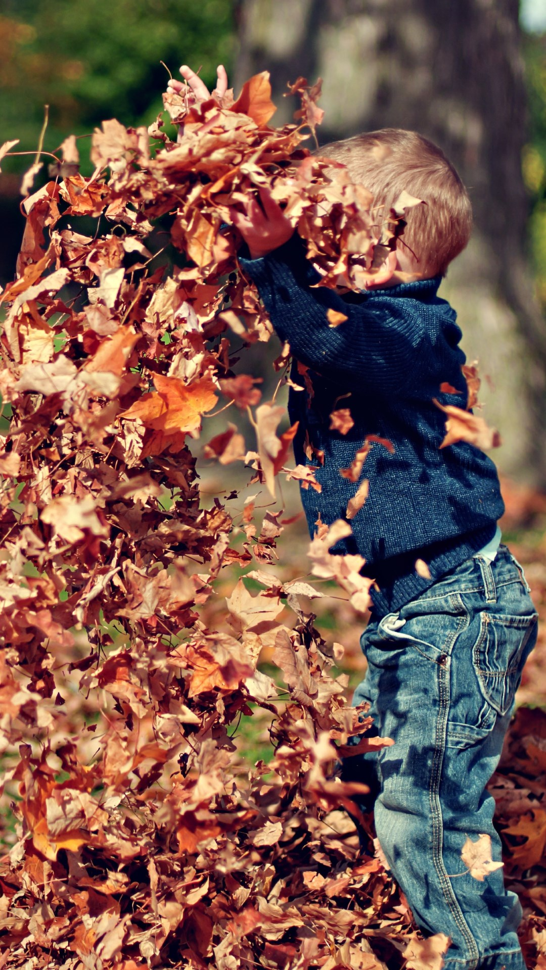 The child is playing with leaves wallpaper 1080x1920