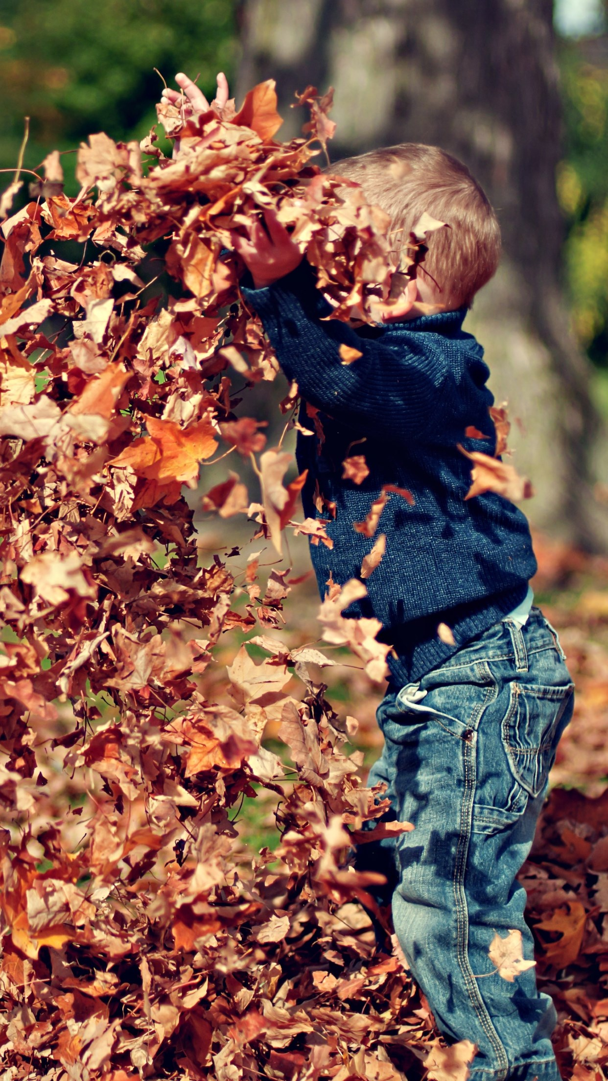 The child is playing with leaves wallpaper 1242x2208