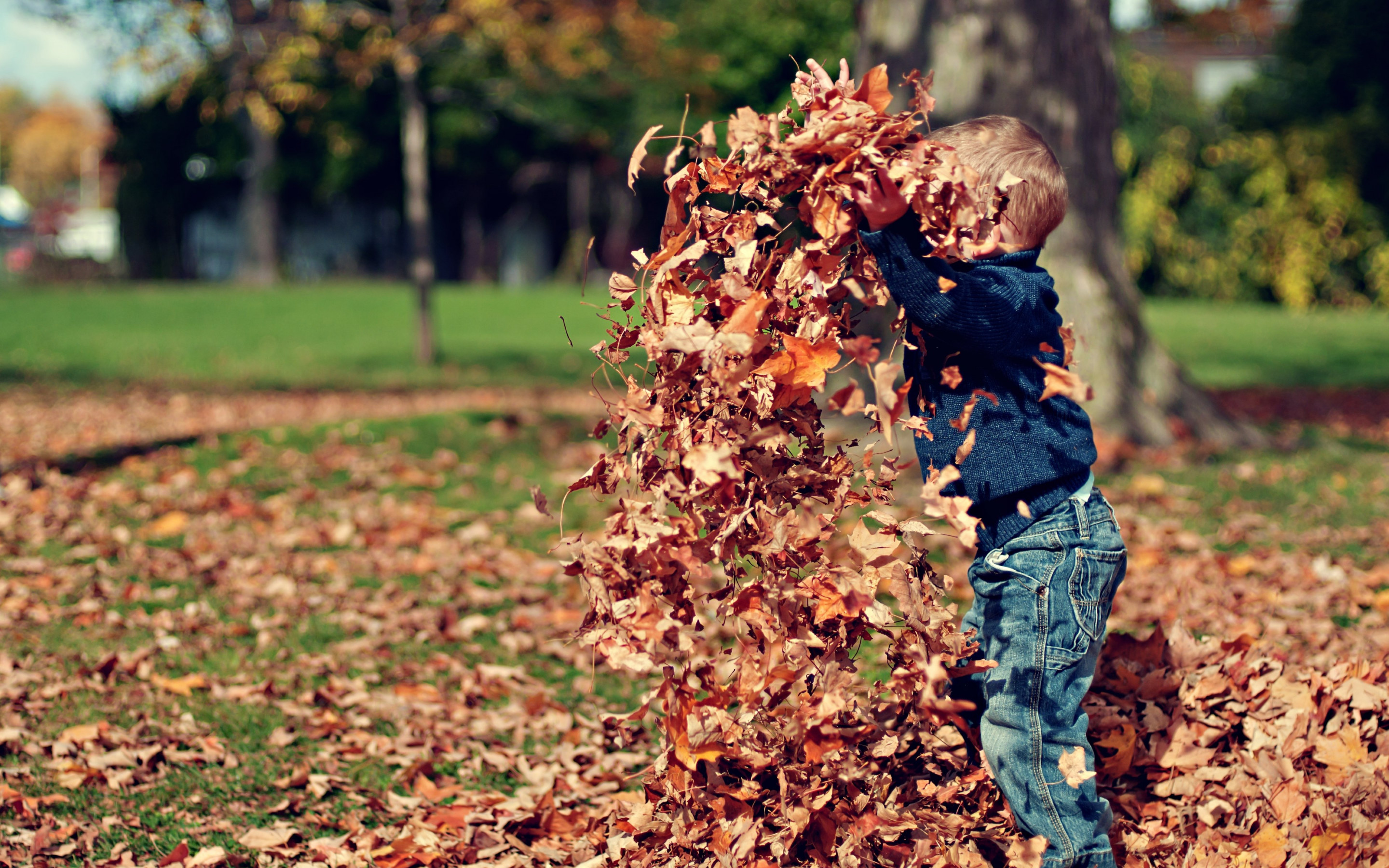 The child is playing with leaves | 2880x1800 wallpaper