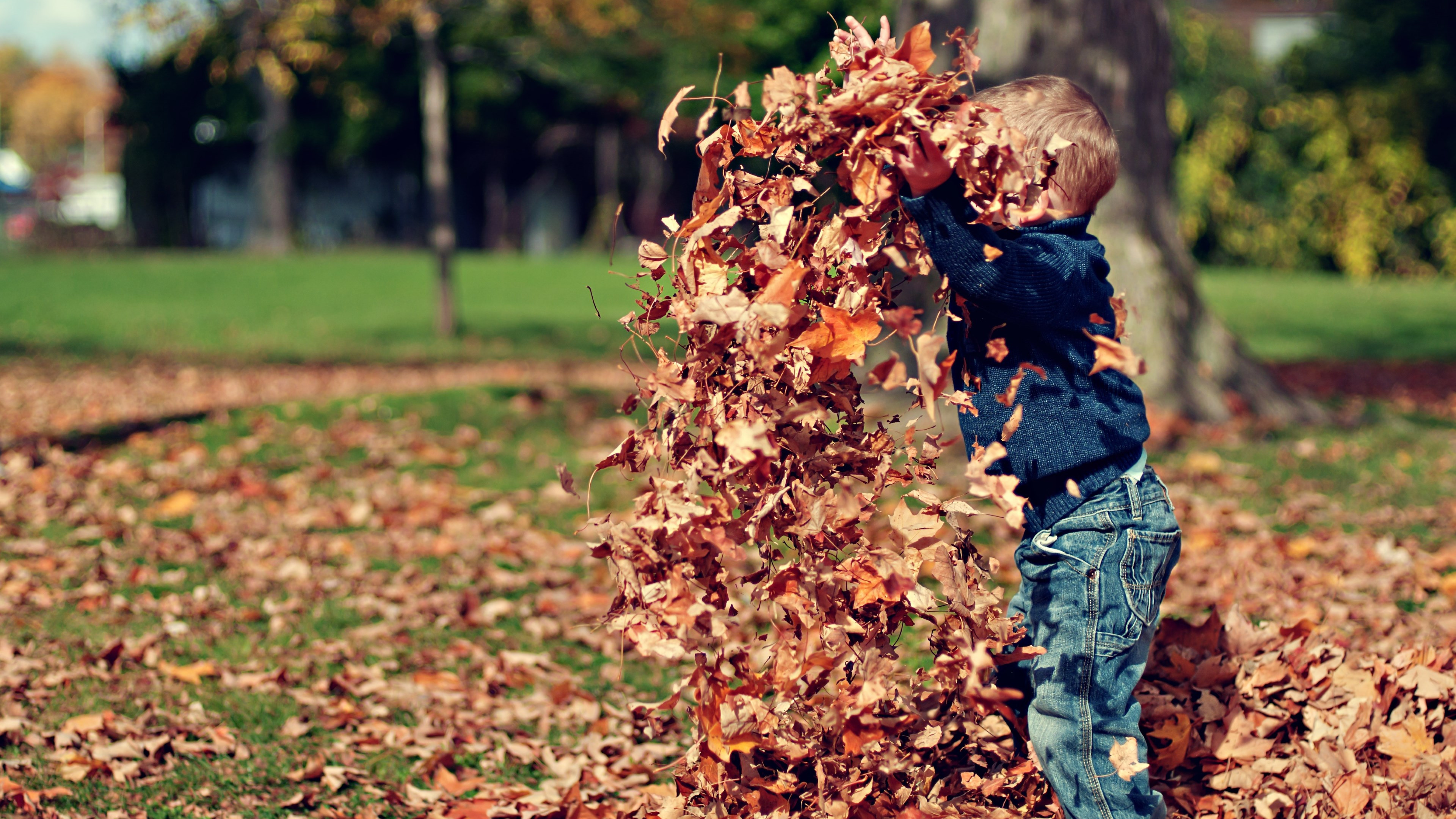 The child is playing with leaves wallpaper 3840x2160